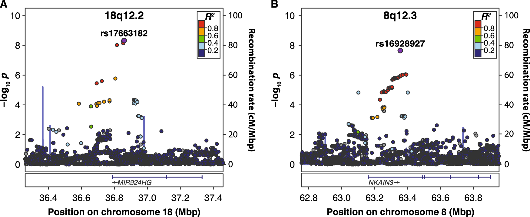 Discovery Of The First Genome Wide Significant Risk Loci For Attention >> Genome Wide Association Scan Identifies New Variants Associated With