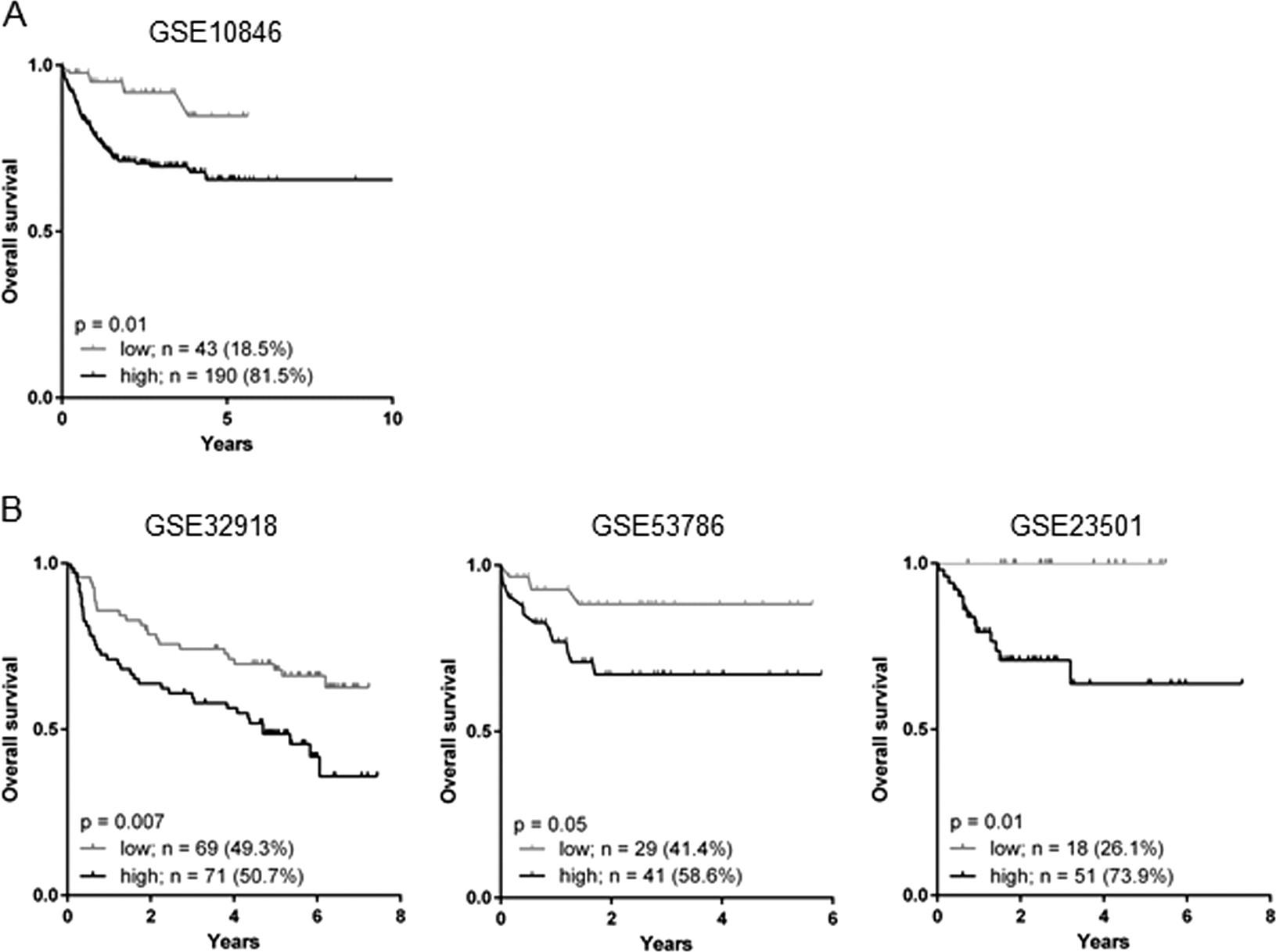 Tumor-associated neutrophils correlate with poor prognosis