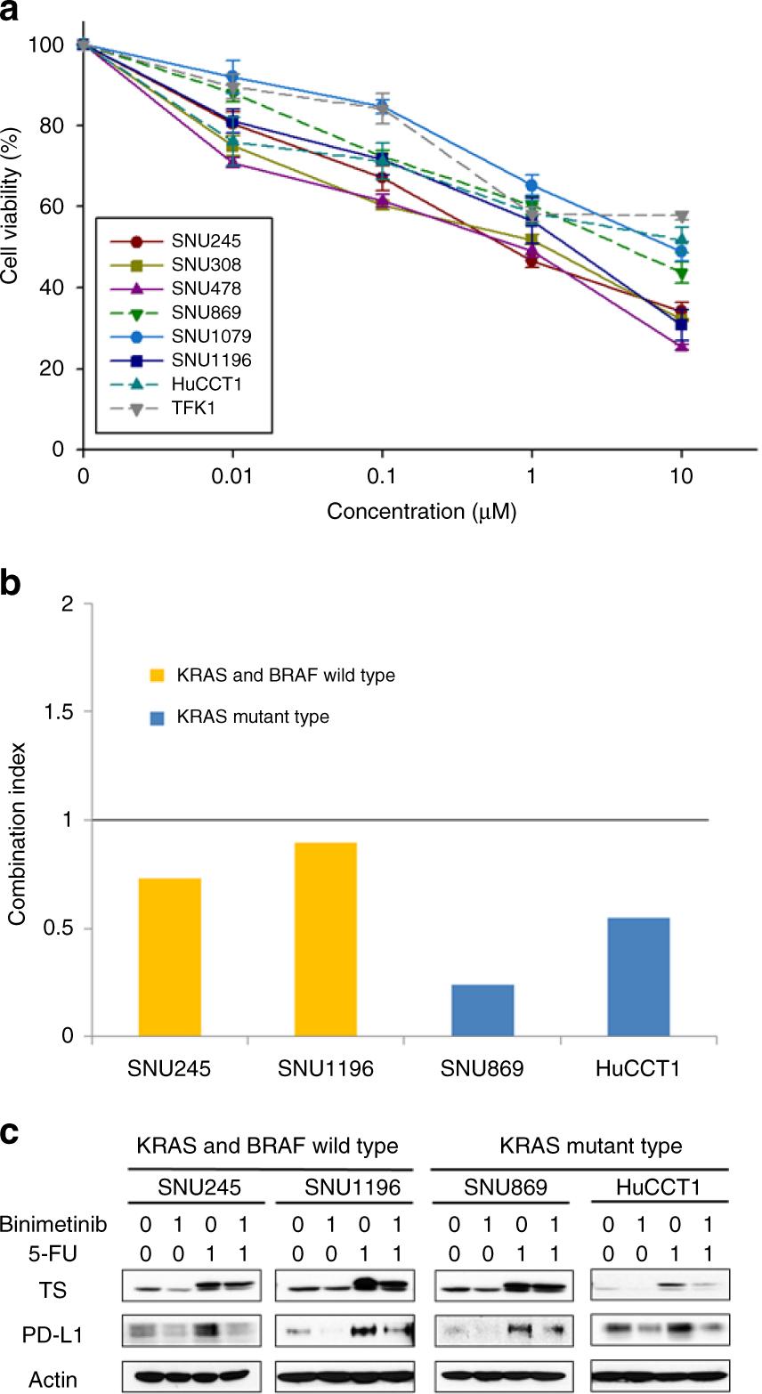Enhanced antitumor effect of binimetinib in combination with