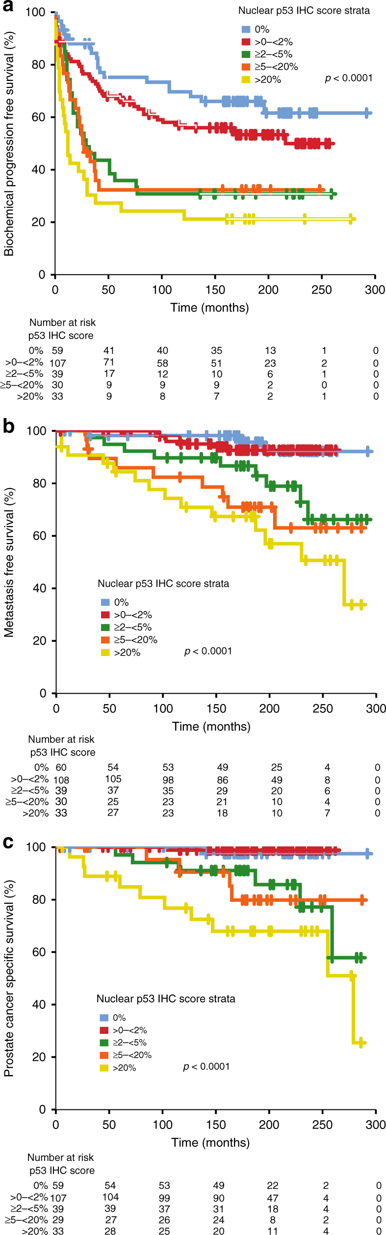 p53 nuclear accumulation as an early indicator of lethal prostate canc
