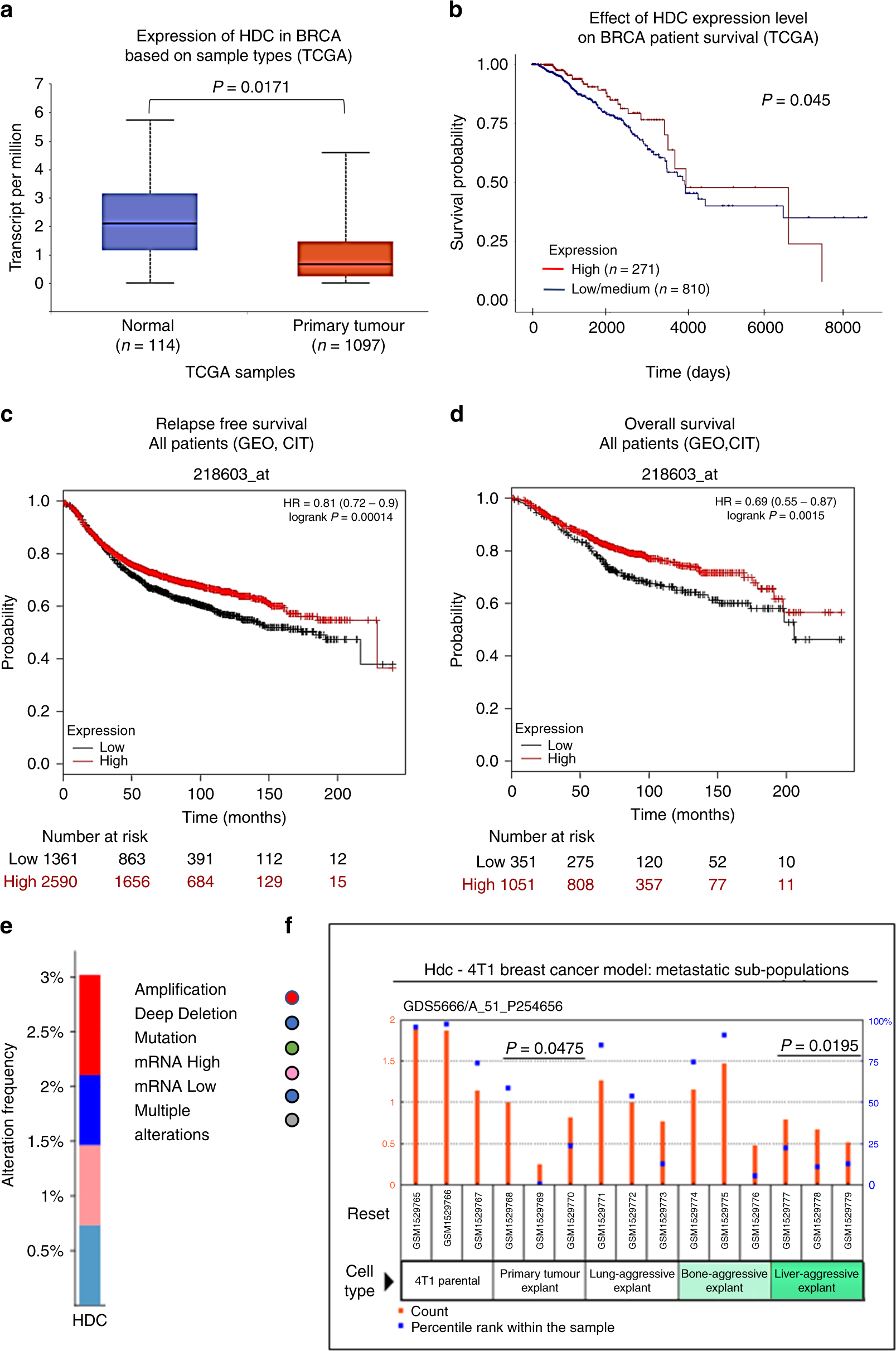 Study of the antitumour effects and the modulation of immune response