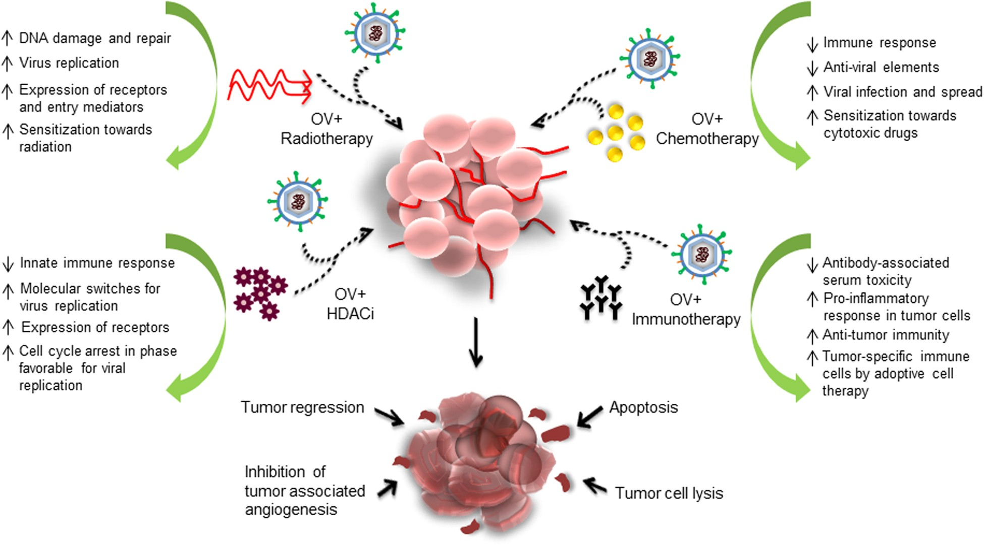 Recombinant viruses with other anti-cancer therapeutics: a step