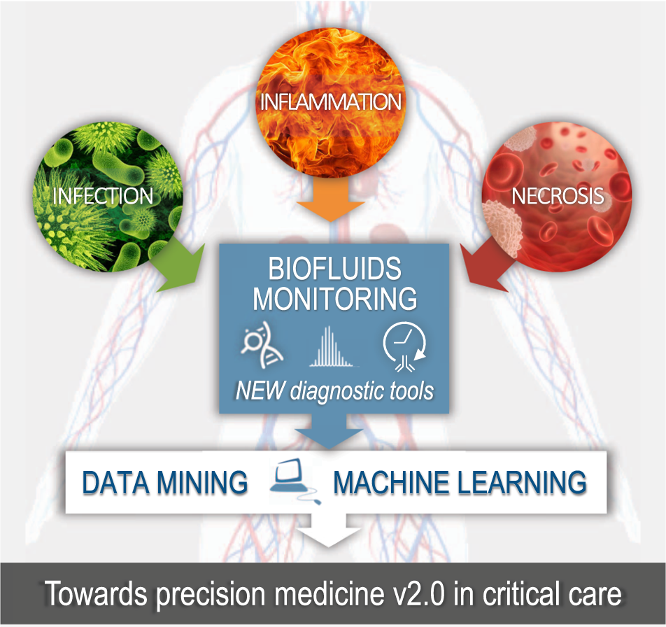 Paving the way for precision medicine v2 0 in intensive care