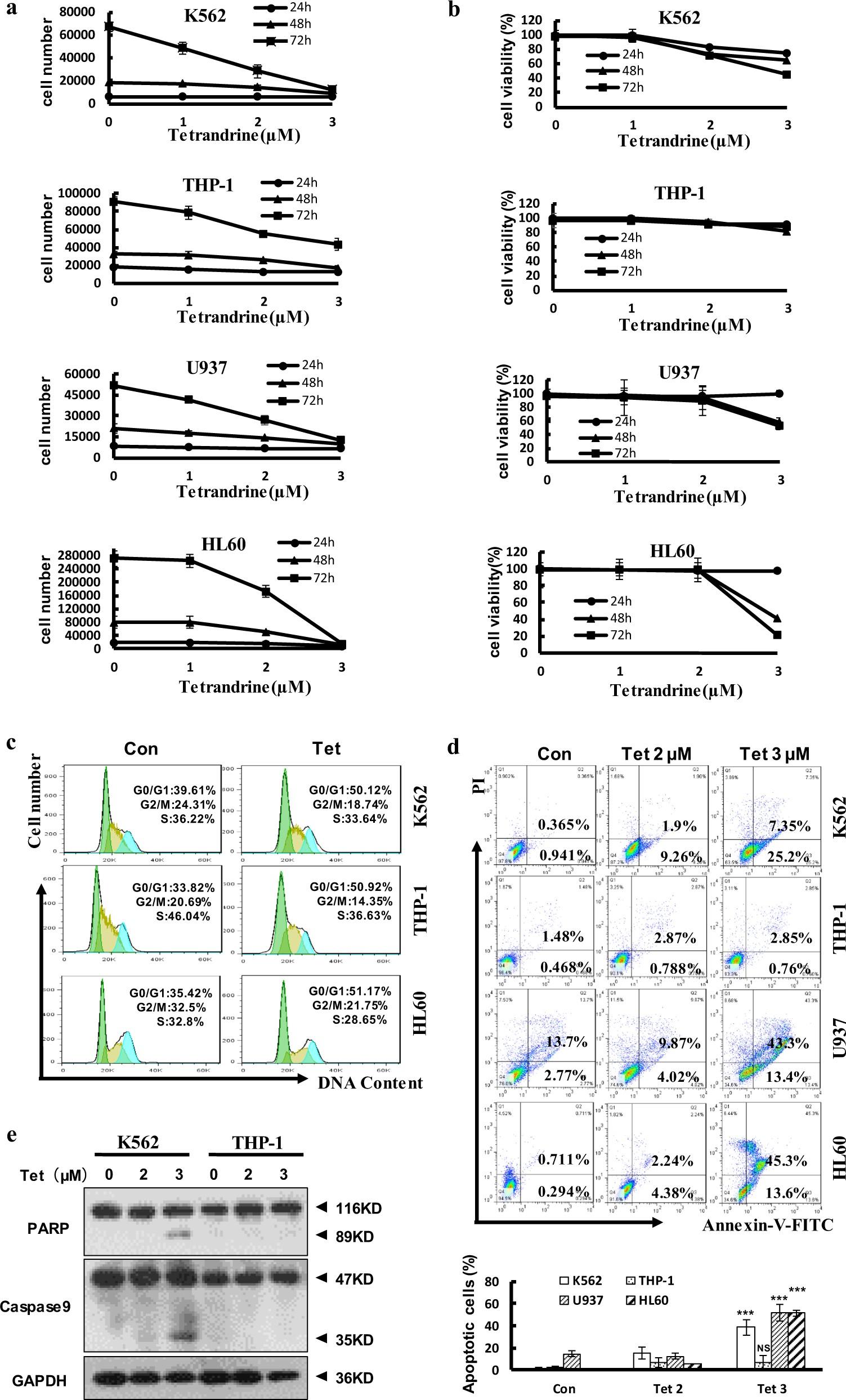 c-MYC and reactive oxygen species play roles in tetrandrine