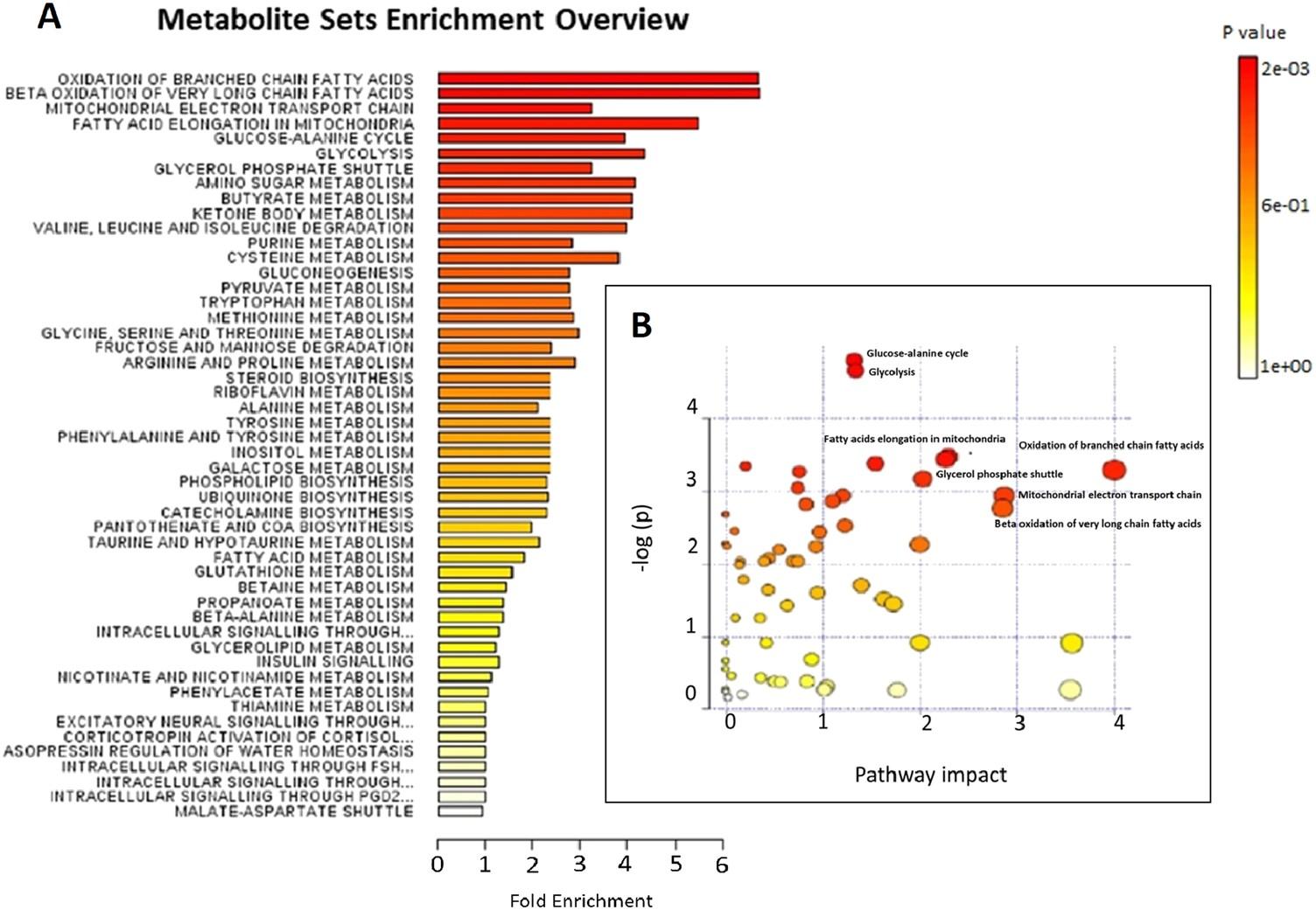 825e9bf928f09 Metabolic patterns in insulin-resistant male hypogonadism
