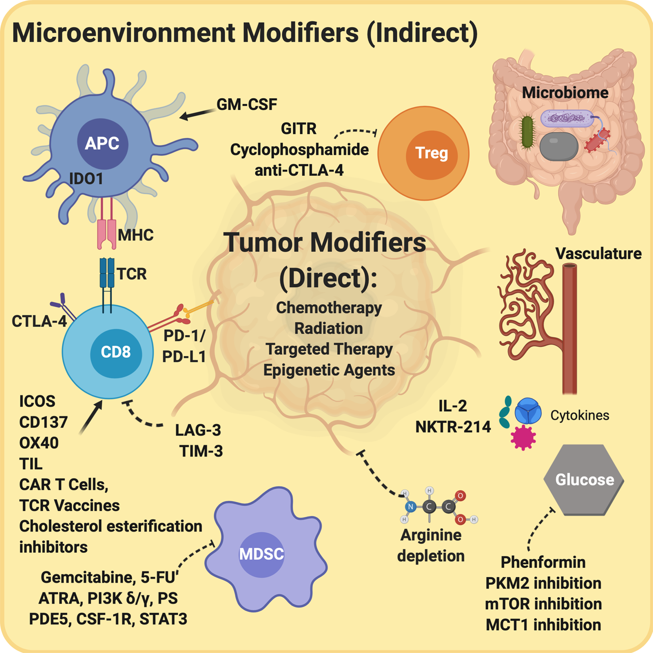 immunotherapy for prostate cancer 2020)
