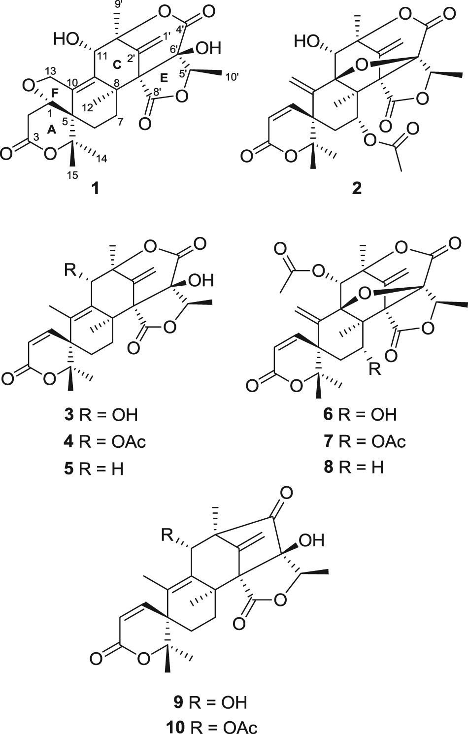 Furanoaustinol And 7 Acetoxydehydroaustinol New Meroterpenoids From Potato Gun Diagram A Marine Derived Fungal Strain Penicillium Sp Sf 5497 The Journal Of Antibiotics