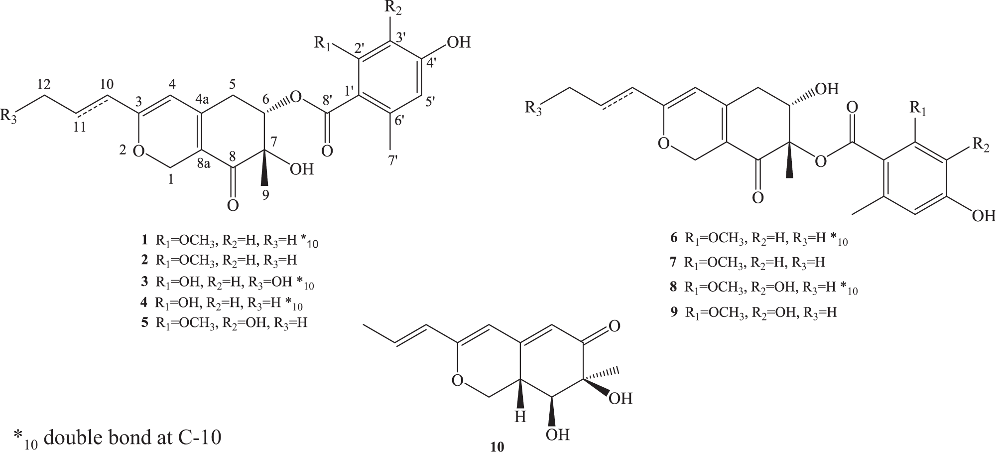 New azaphilones from Penicillium variabile , a fungal endophyte from r