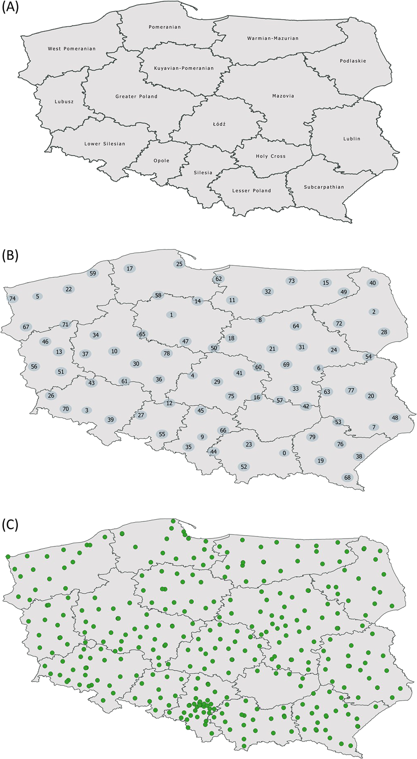 Mitochondrial DNA variability of the Polish population