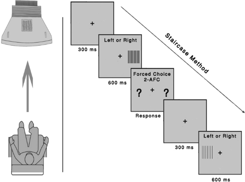 Spatial contrast sensitivity: effects of reliability, test–retest
