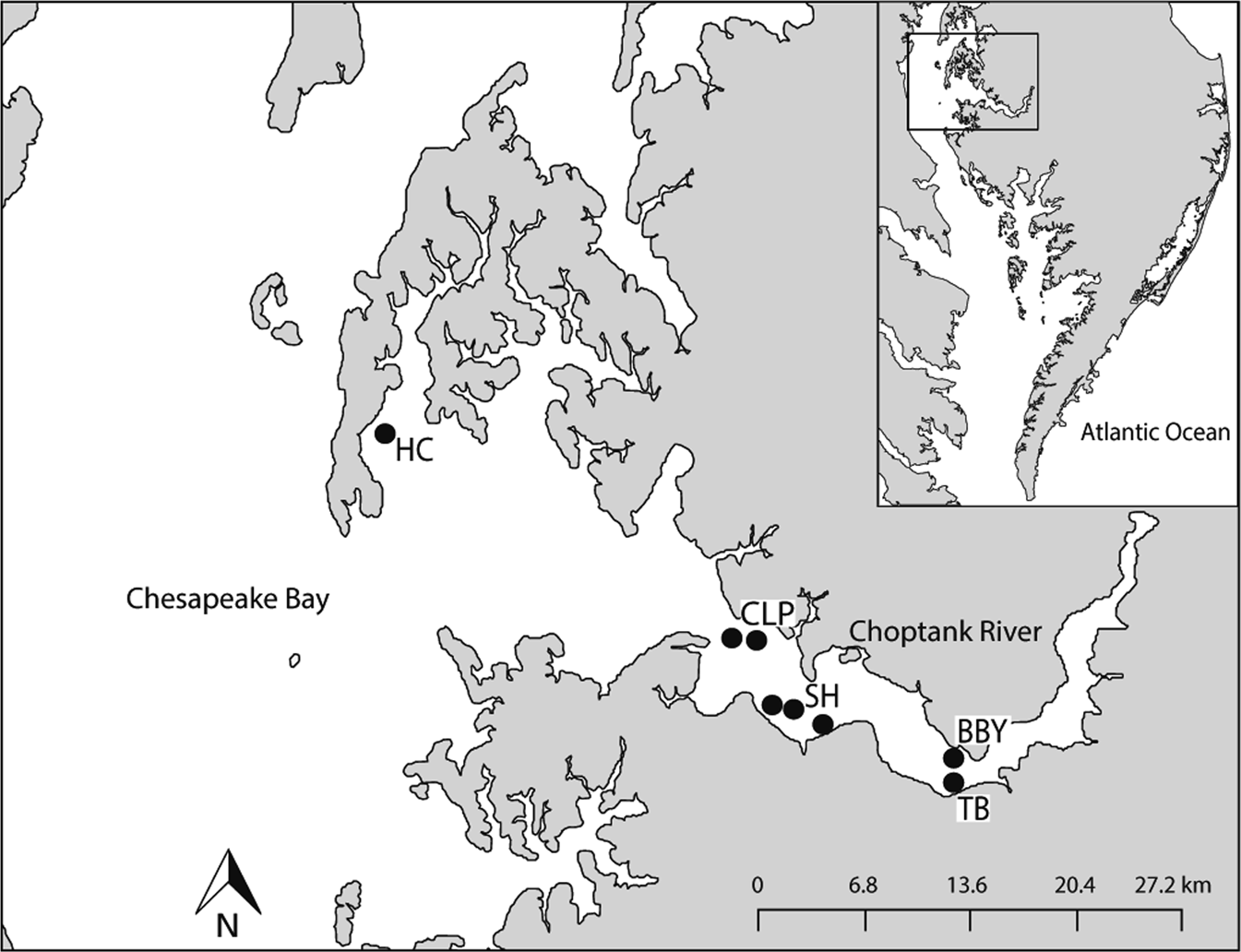 d0abf280802f ... large-scale oyster restoration program  effects of hatchery propagation  and initial characterization of diversity on restored vs. wild reefs