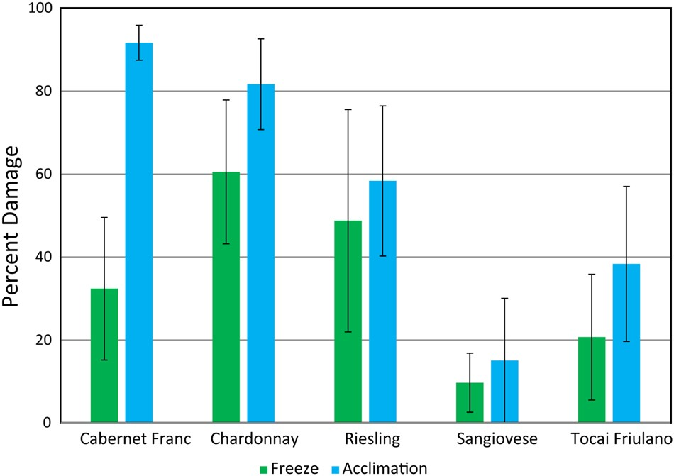 divergence in the transcriptional landscape between low temperature and  freeze shock in cultivated grapevine ( vitis vinifera ) | horticulture  research