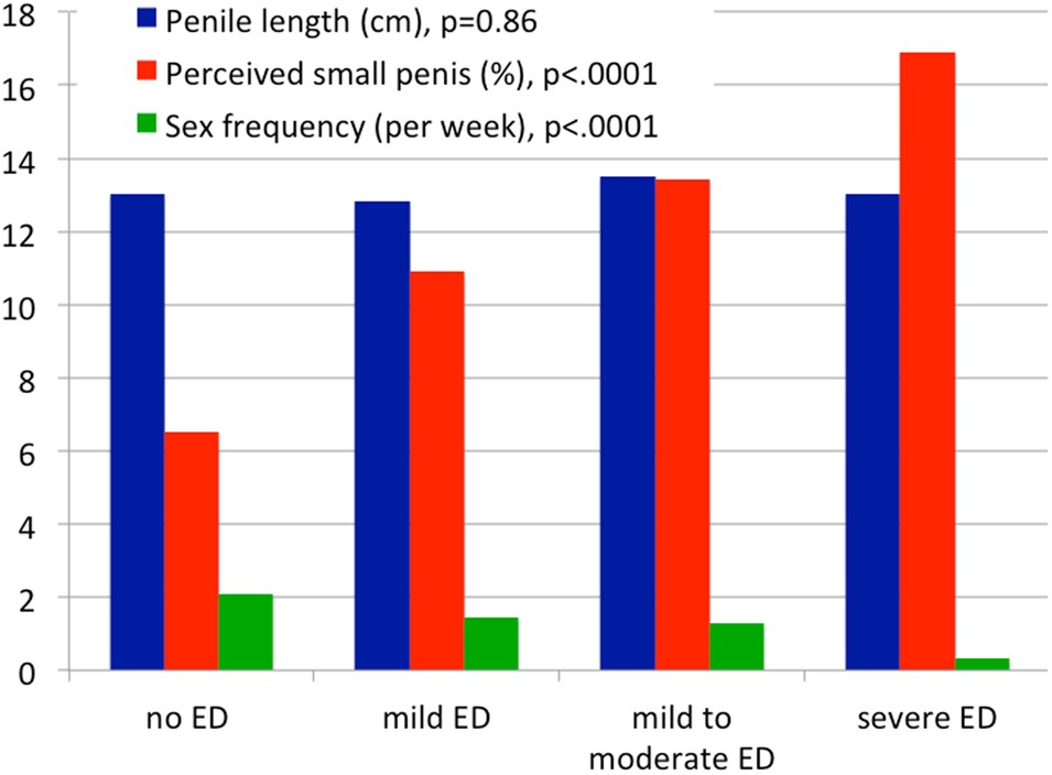 Does Underestimated Penile Size Impact Erectile Function In Healthy Men? |  International Journal Of Impotence Research
