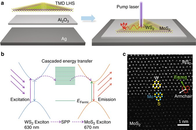 Cascaded Exciton Energy Transfer In A Monolayer Semiconductor