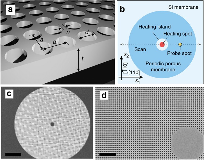 Thermal conductivity and air-mediated losses in periodic porous
