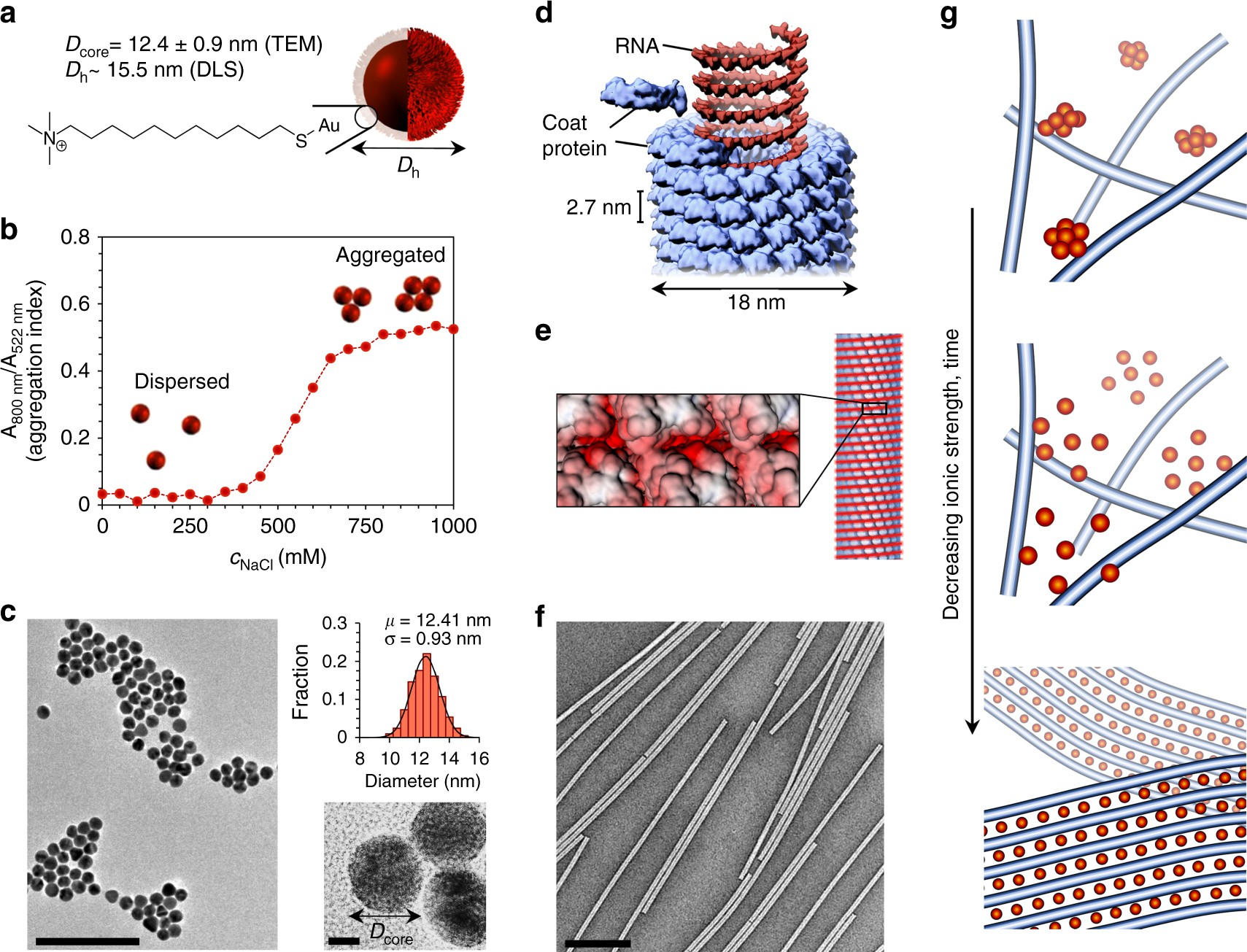 Cooperative Colloidal Self Assembly Of Metal Protein Superlattice Molecular In Nanotechnology Wires Nature Communications
