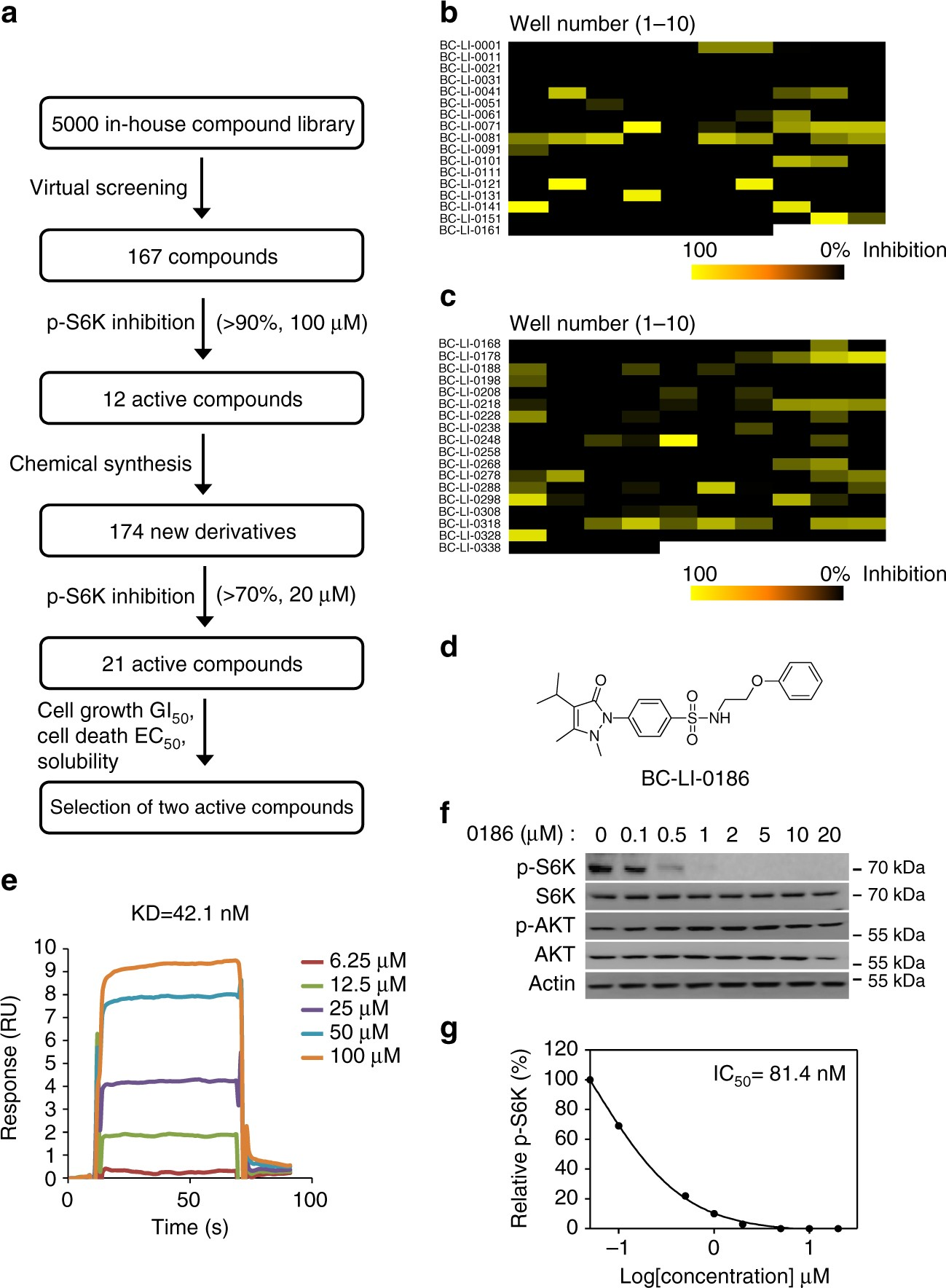 20a raptor chip wiring diagram control of leucine dependent mtorc1 pathway through chemical  leucine dependent mtorc1 pathway
