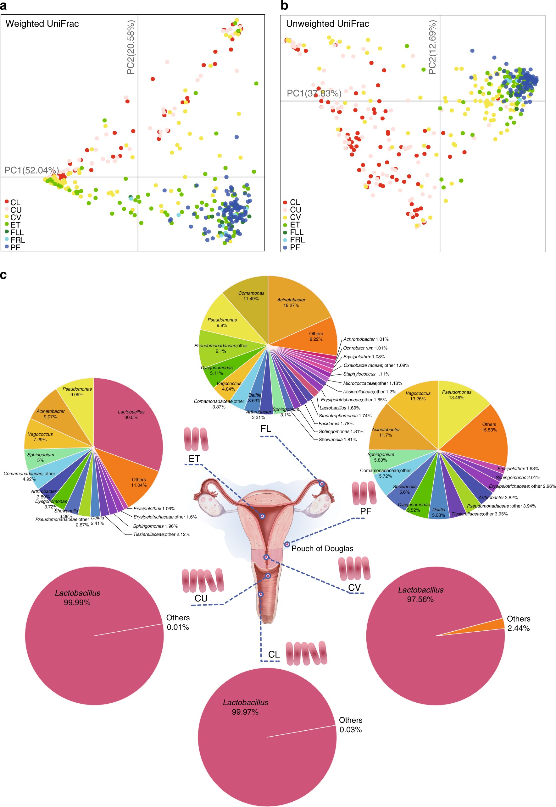 The Microbiota Continuum Along The Female Reproductive Tract And Its