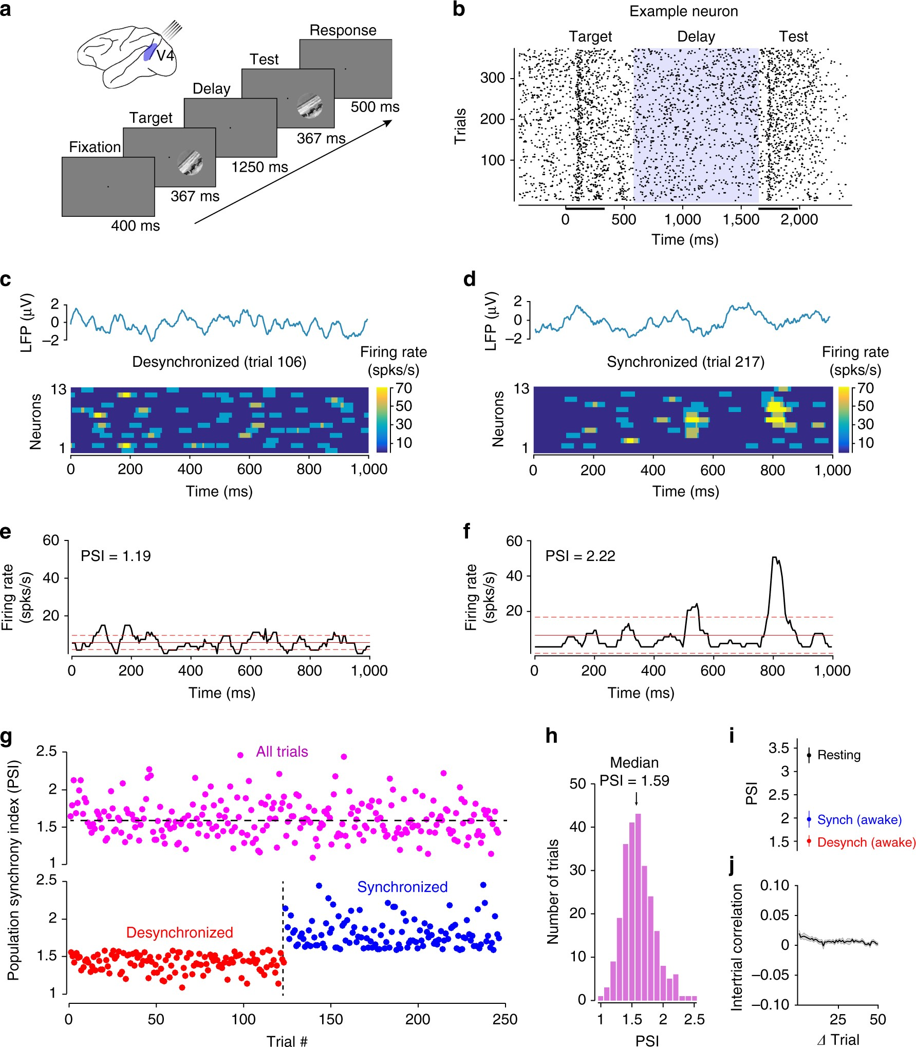 Sensory Coding Accuracy And Perceptual Performance Are Improved 99 Electronic Toolbox 10 Combines During The Desynchronized Cortical State Nature Communications