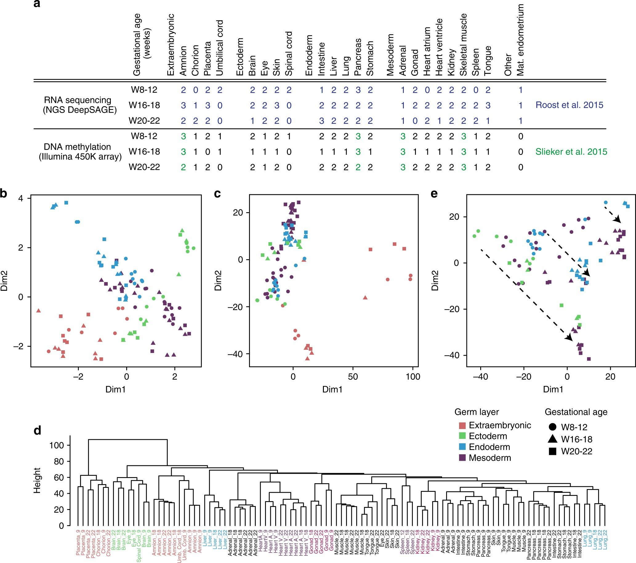 DNA methylation and transcriptional trajectories during