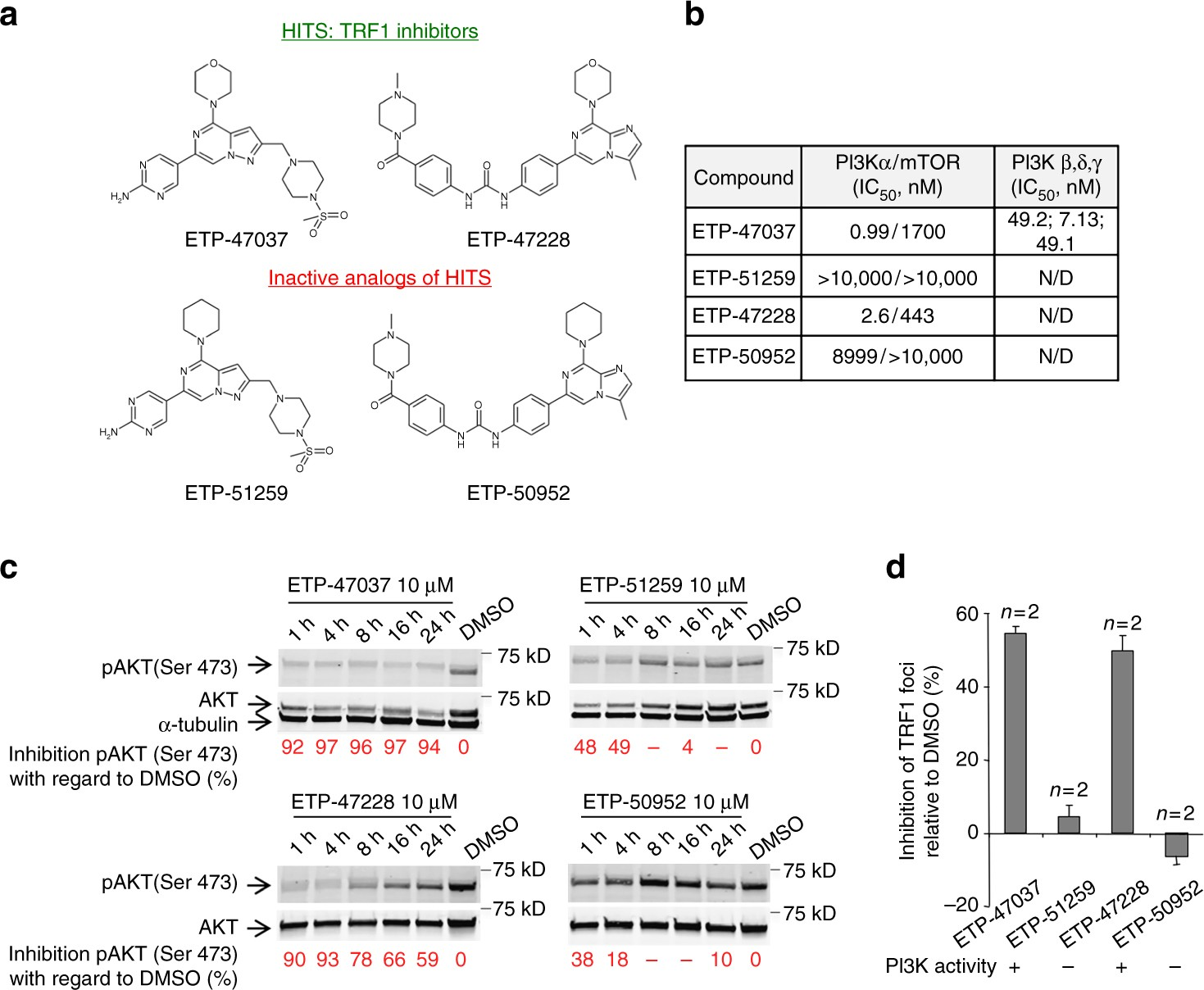 Modulation Of Telomere Protection By The Pi3k Akt Pathway Nature Xl Axis Rp 50000 Communications