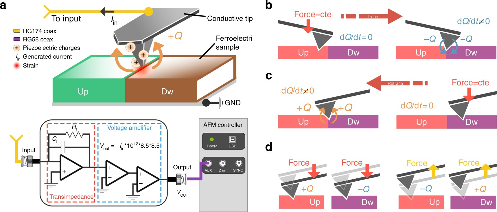 Piezo Generated Charge Mapping Revealed Through Direct Piezoelectric Oliver 1600 Wiring Diagram Force Microscopy Nature Communications