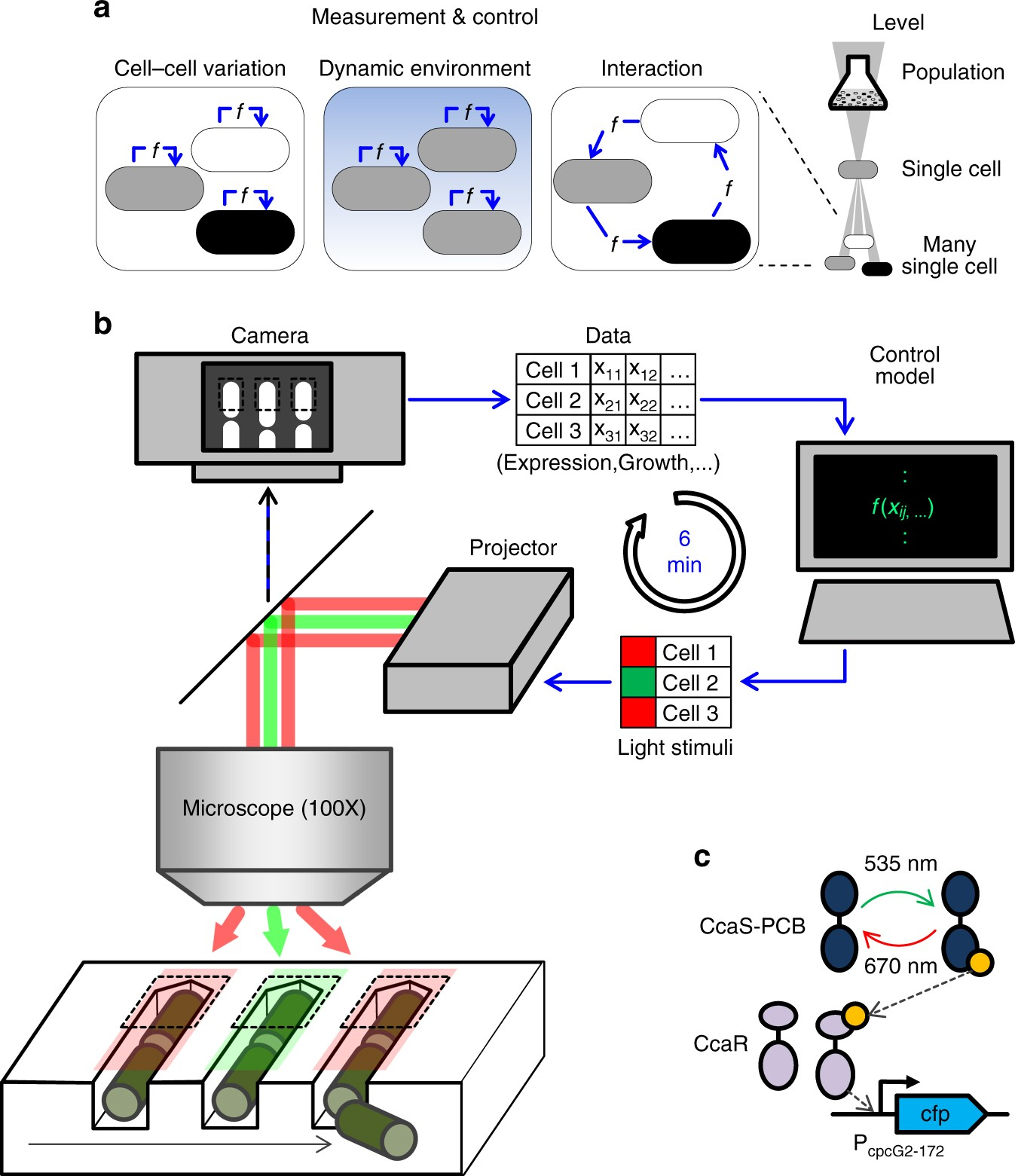Shaping Bacterial Population Behavior Through Computer Interfaced Circuits Gt 6 12 Volt Adjustable Power Supply Circuit Schematic Control Of Individual Cells Nature Communications