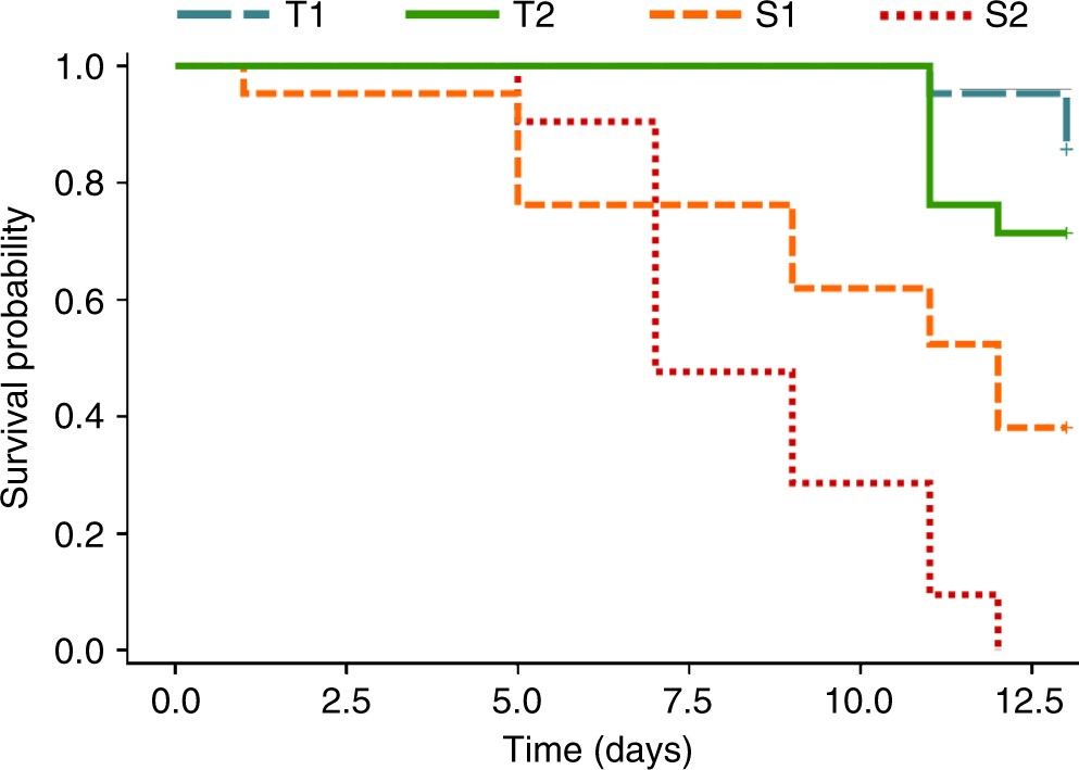 Host Genotype Dependent Gut Microbiota Drives Zooplankton Tolerance