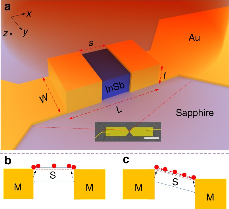 Surface plasmon induced direct detection of long wavelength photons