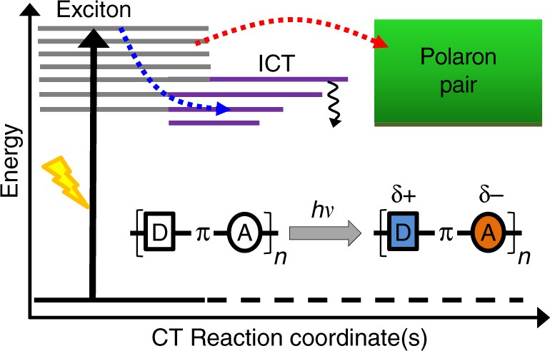 Ultrafast bridge planarization in donor-π-acceptor