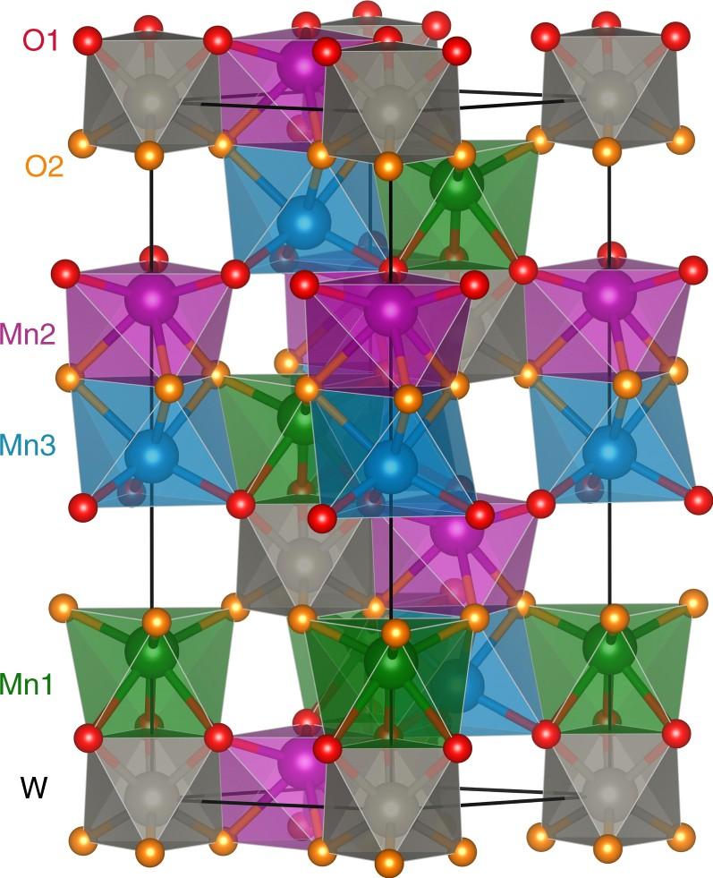 Magnetostriction-polarization coupling in multiferroic Mn 2
