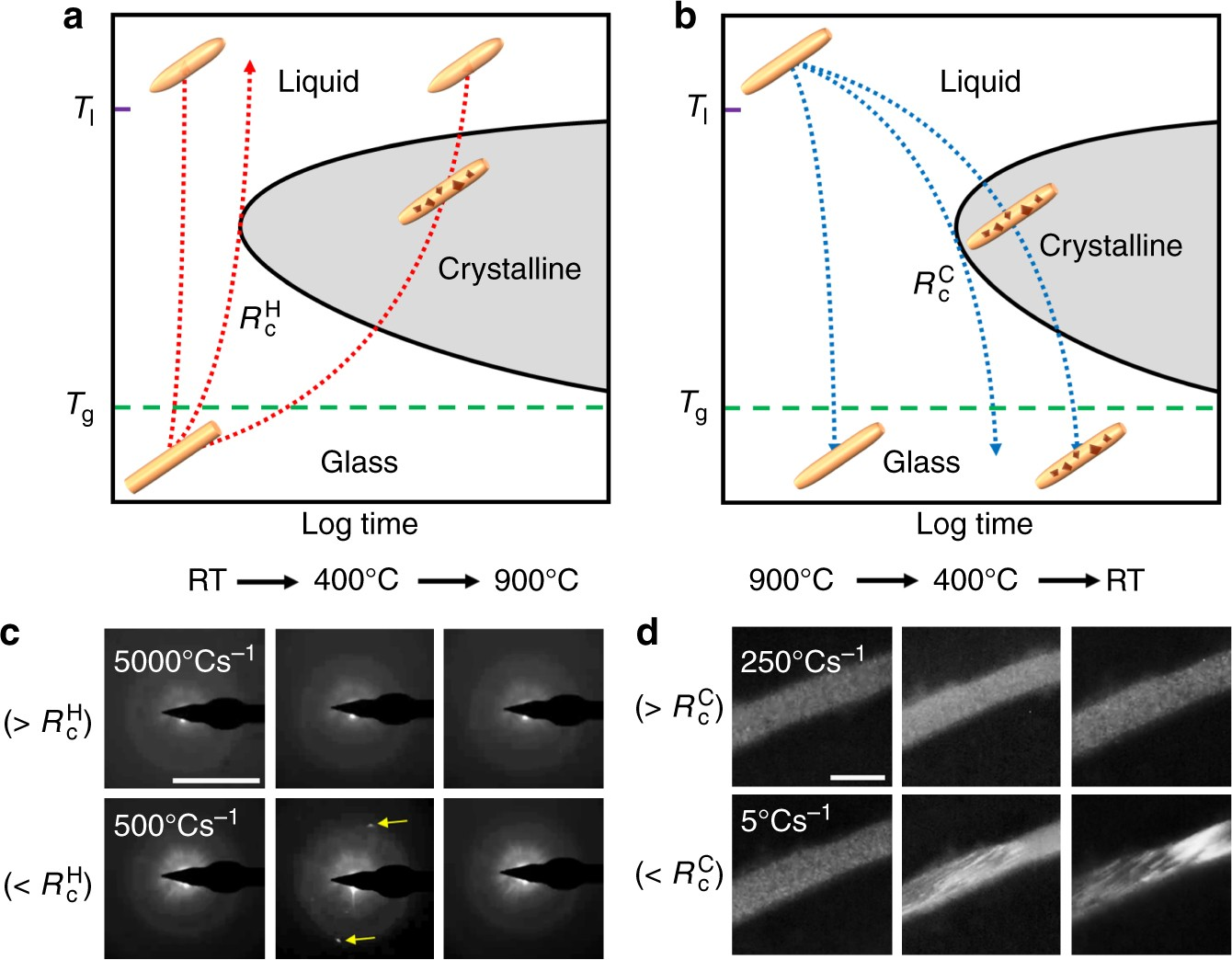 208f7bea1e16 Tailoring crystallization phases in metallic glass nanorods via nucleus  starvation