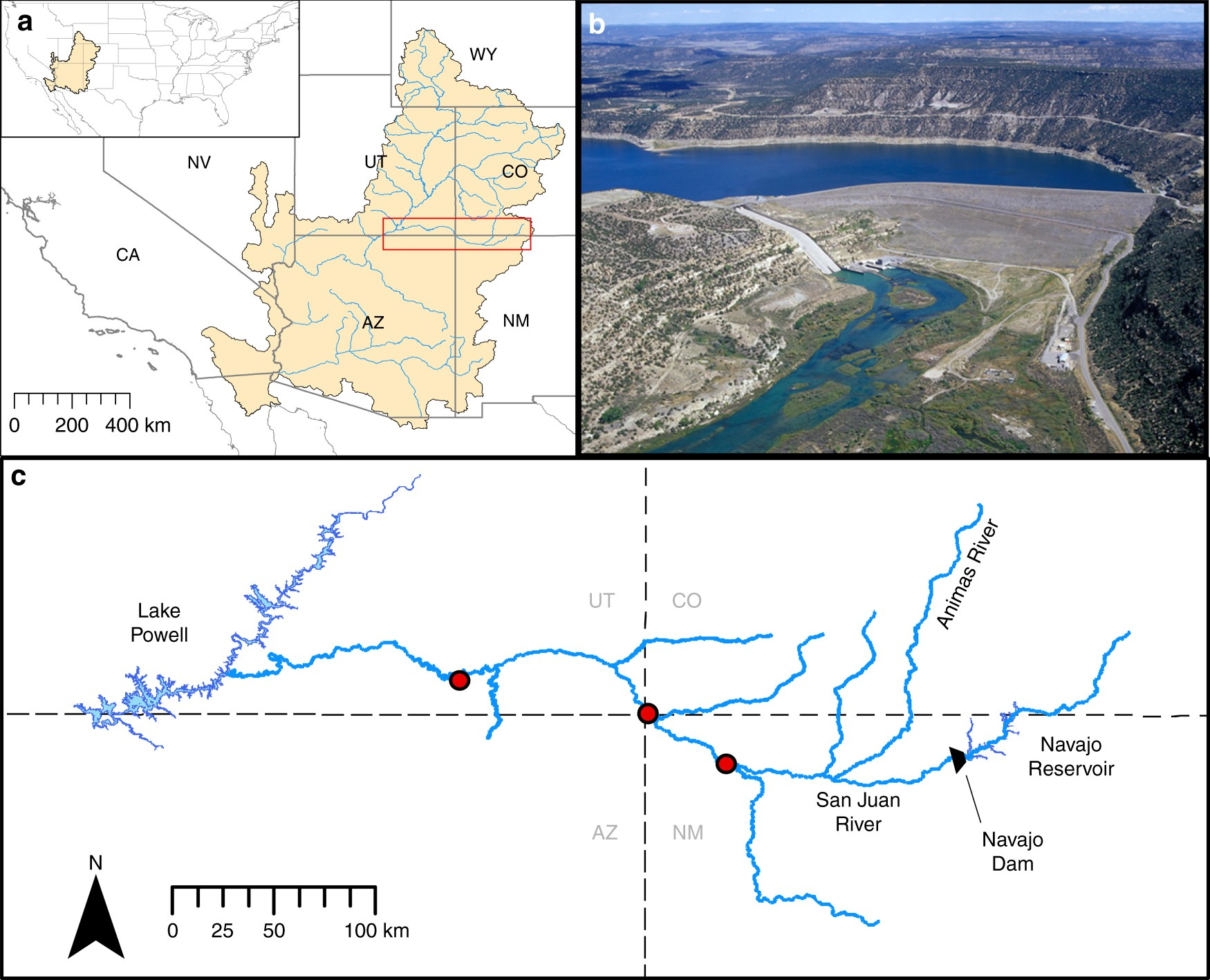 Designing flows to resolve human and environmental water needs in a