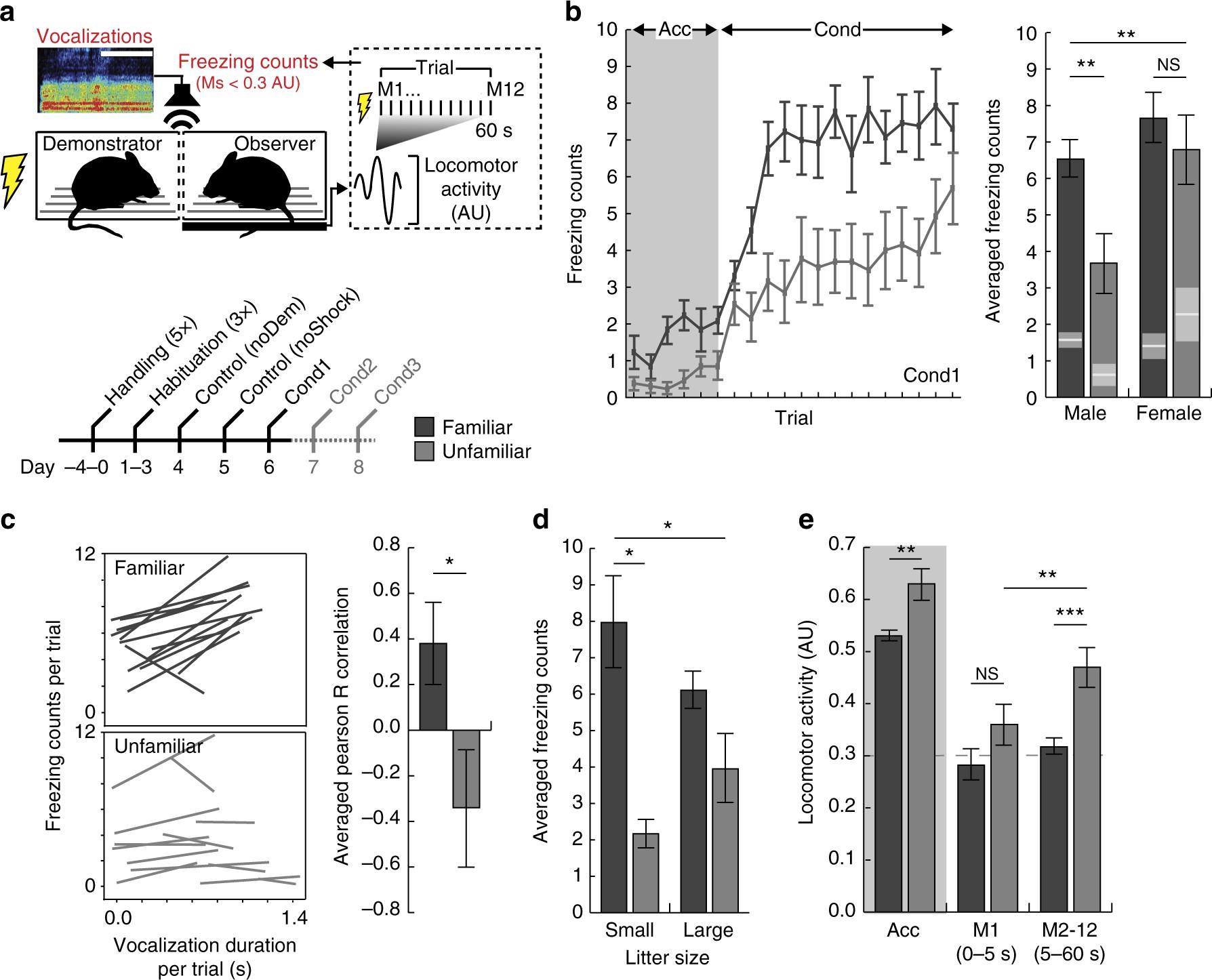 oxytocin enhances observational fear in mice nature communications rh nature com