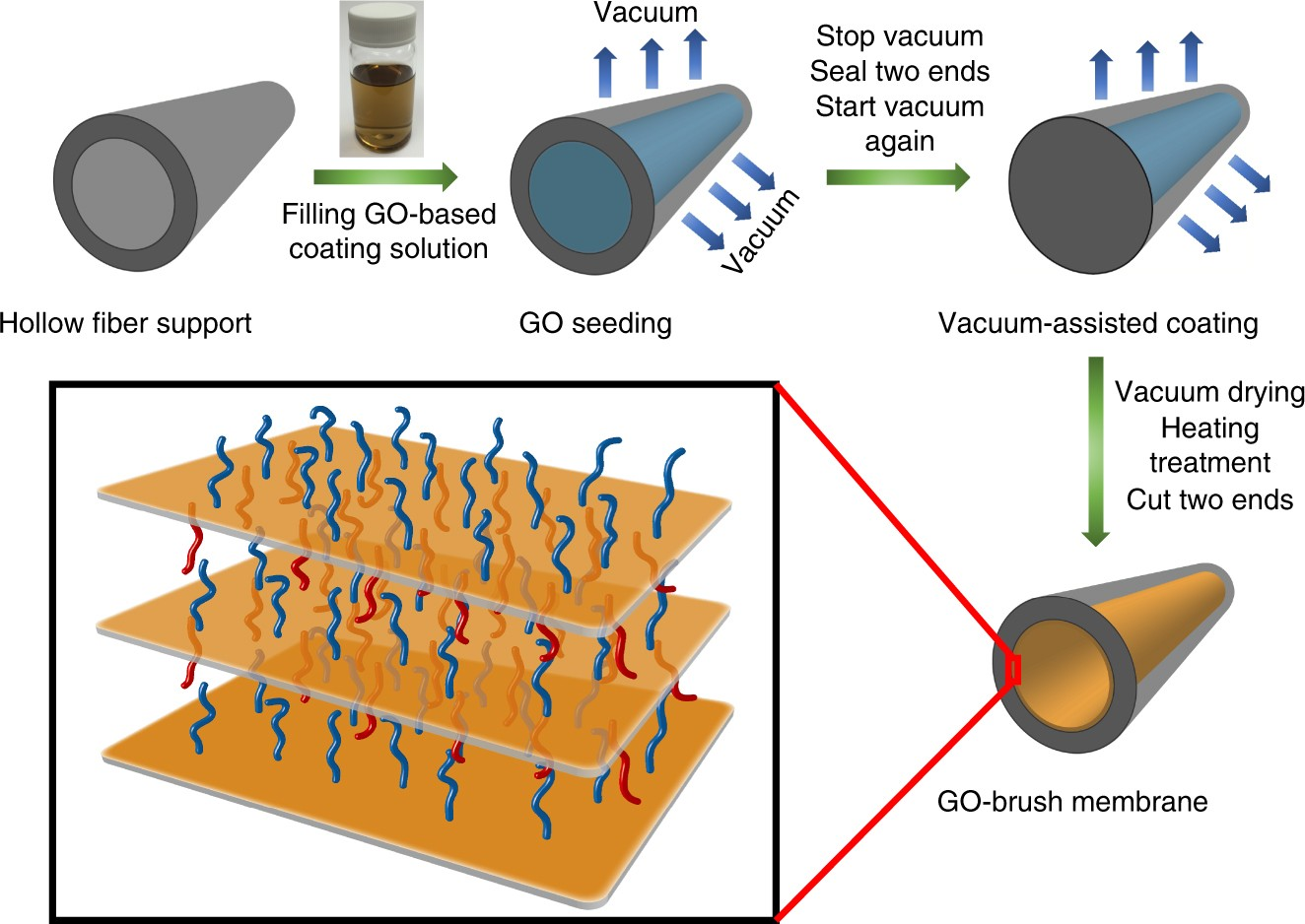Ultrathin graphene oxide-based hollow fiber membranes with brush