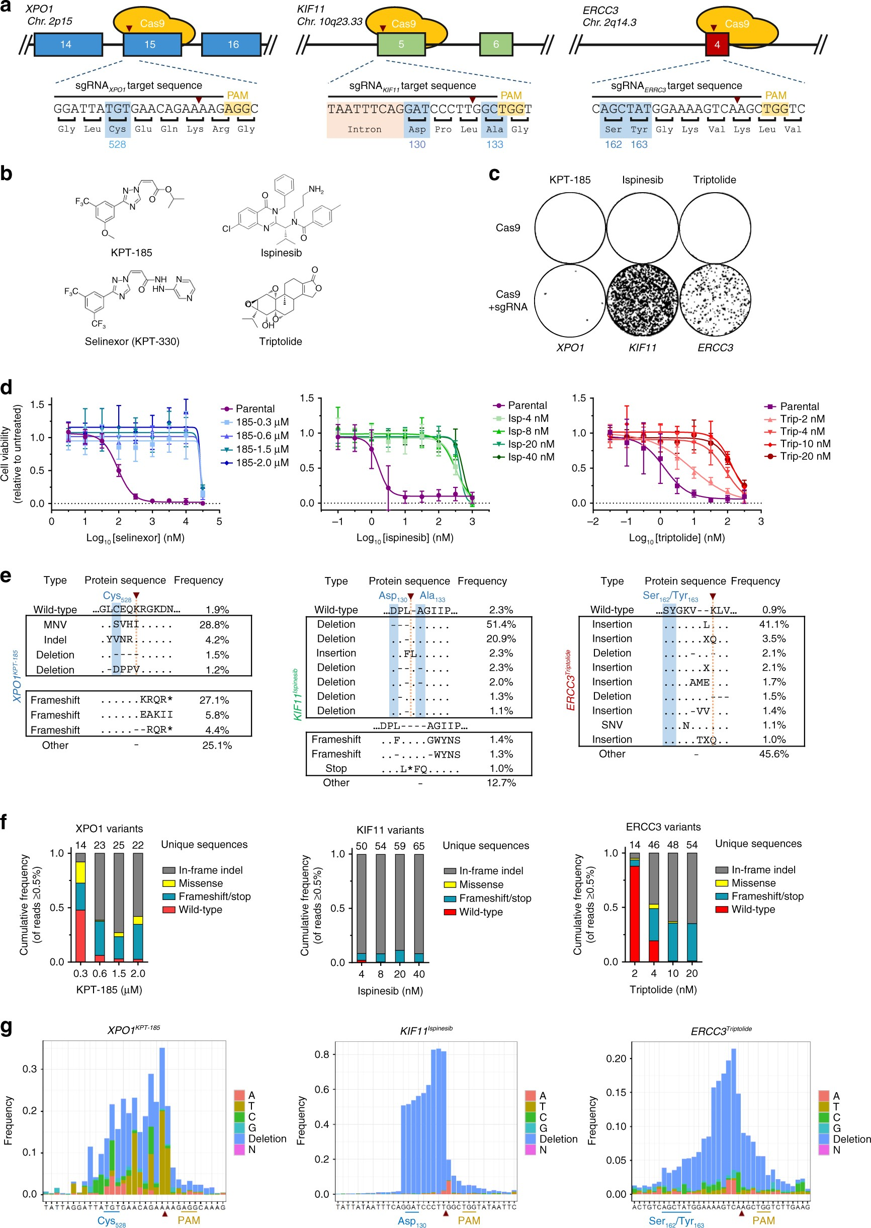 Target identification of small molecules using large-scale CRISPR ...