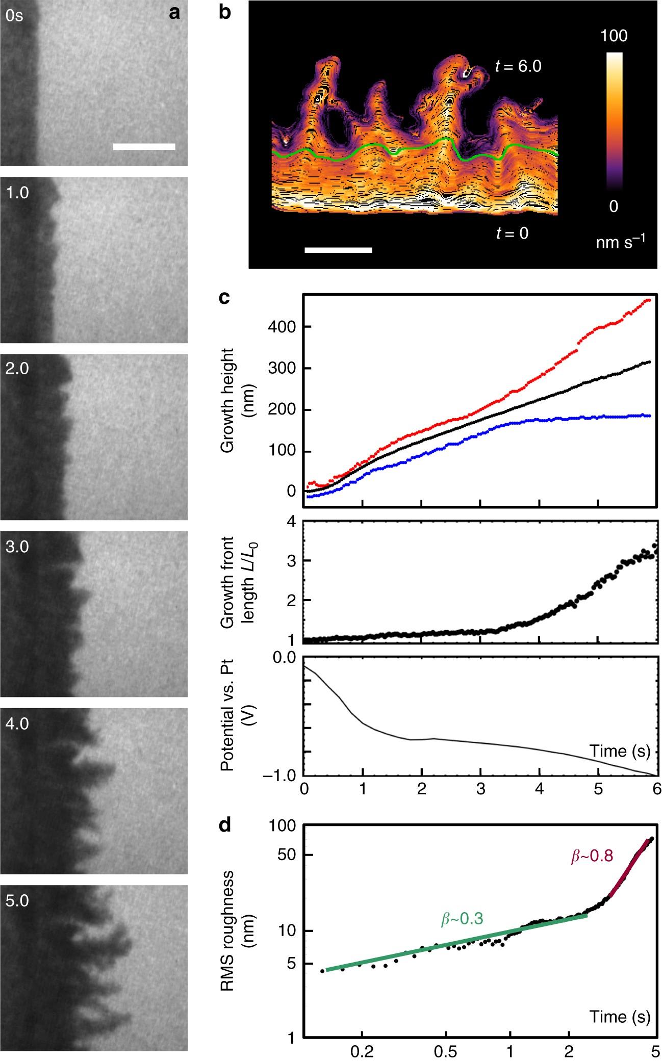 Nanoscale evolution of interface morphology during electrodeposition ...