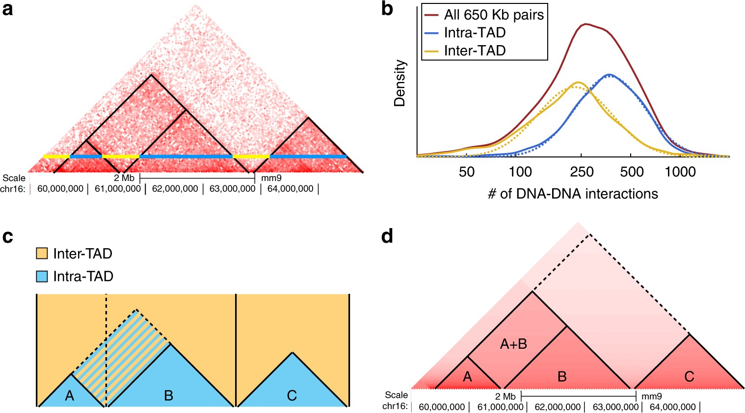 Promoter-enhancer interactions identified from Hi-C data