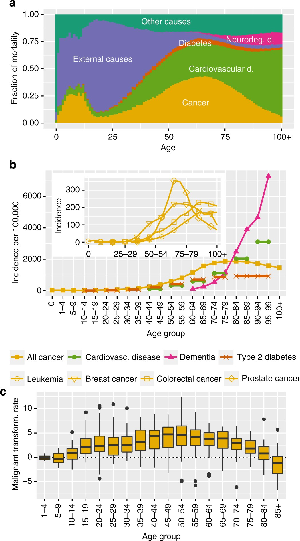 673219fcaeb Transcriptomic alterations during ageing reflect the shift from cancer to  degenerative diseases in the elderly