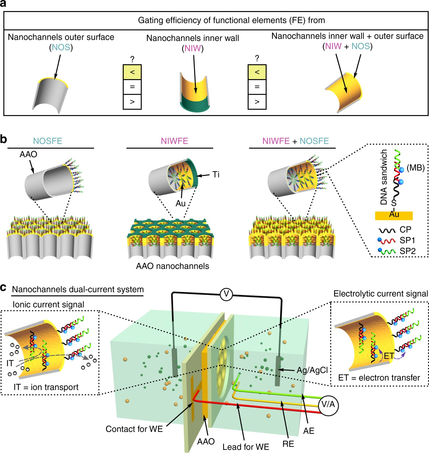 Role Of Outer Surface Probes For Regulating Ion Gating How To Build Picoammeter Circuit With 4 Ranges Nanochannels Nature Communications