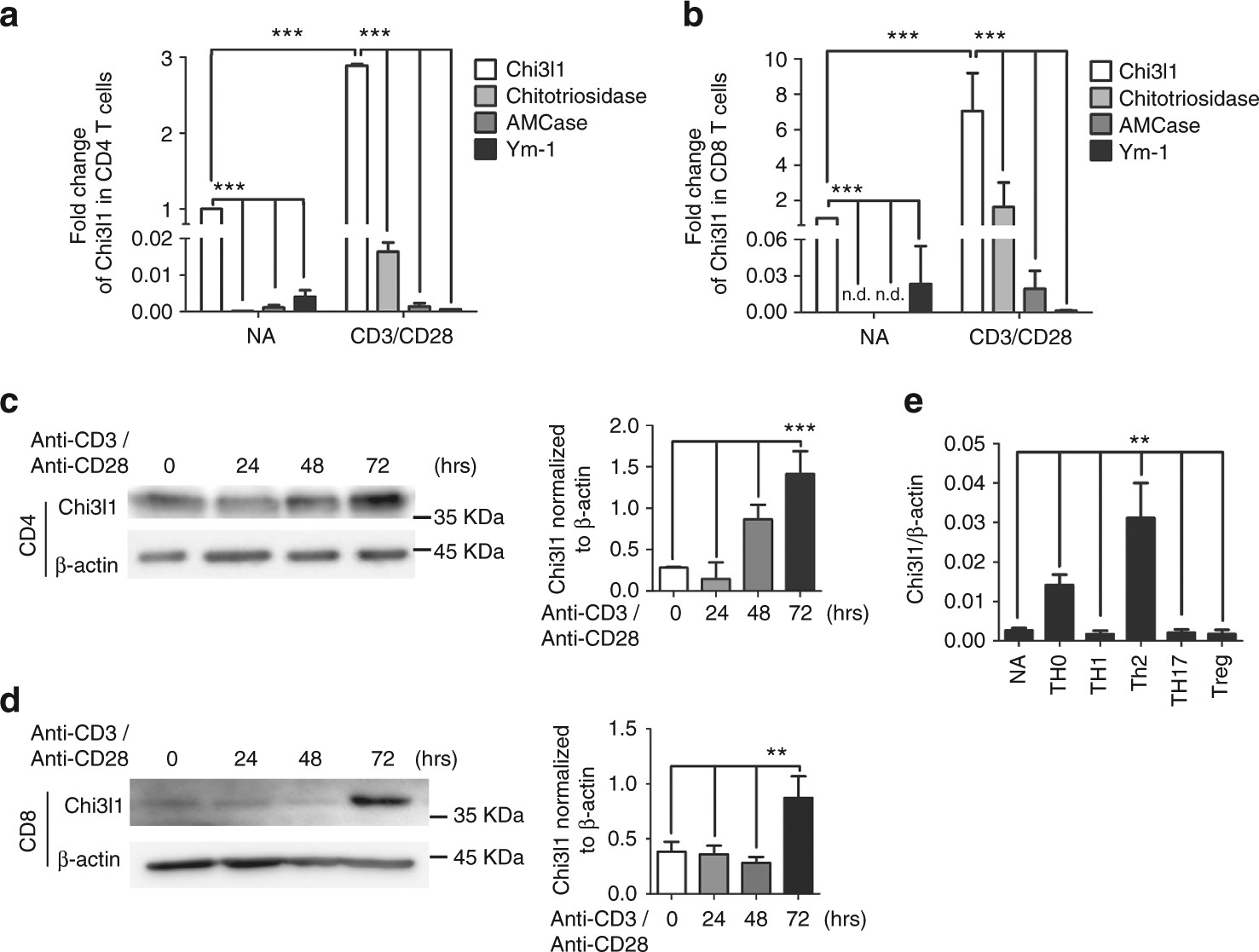 Regulation Of Chitinase 3 Like 1 In T Cell Elicits Th1 And Cytotoxic Efficient Led Driver Works With Single Aa Responses To Inhibit Lung Metastasis Nature Communications