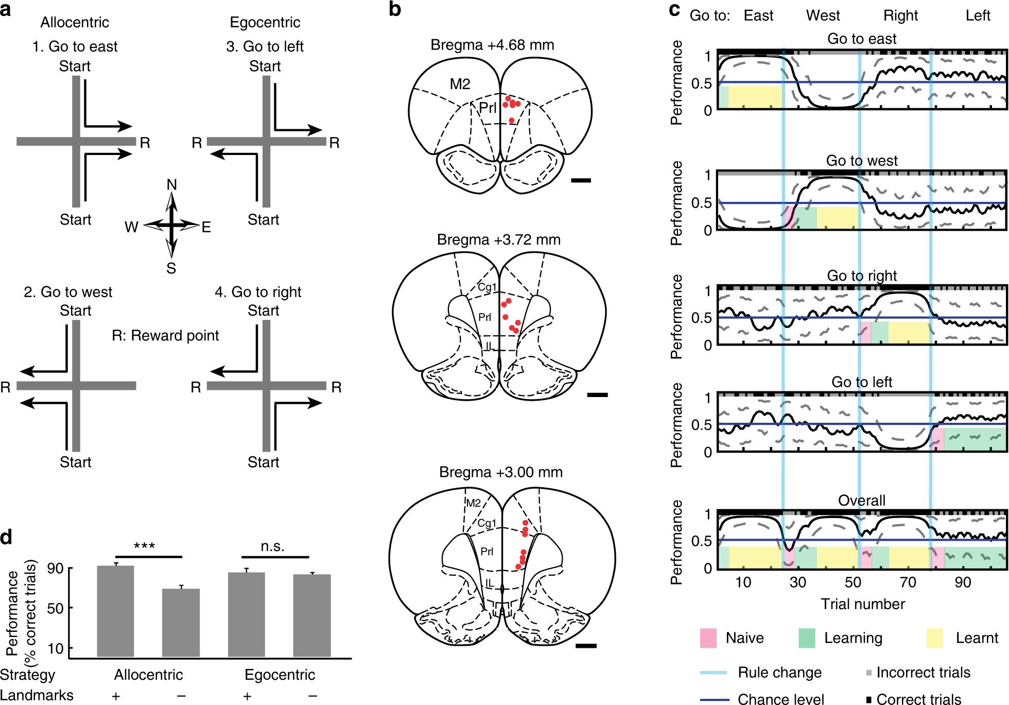Fluid Network Dynamics In The Prefrontal Cortex During Multiple Aor B Wiring Diagrams Strategy Switching Nature Communications