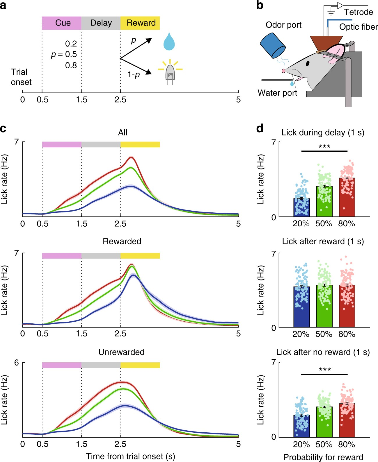 Differential Coding Of Reward And Movement Information In The Wiring Diagram Symbols On Examine This Three Phase Motor Control Dorsomedial Striatal Direct Indirect Pathways Nature Communications