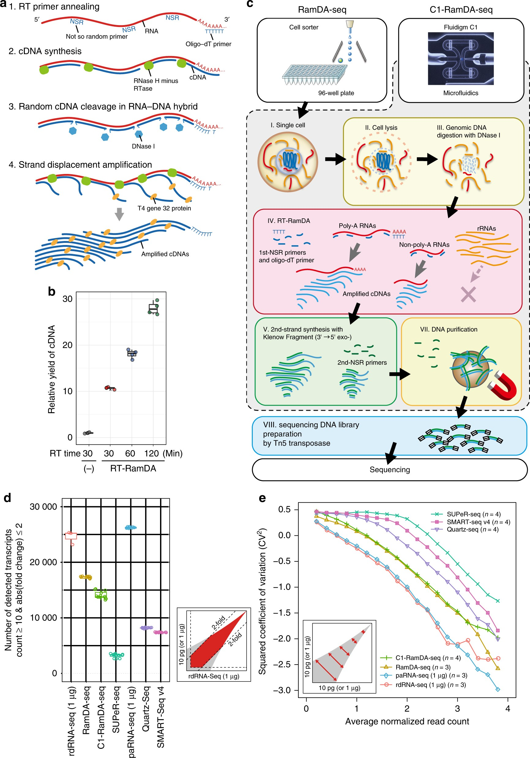 744ee77b919fc7 Single-cell full-length total RNA sequencing uncovers dynamics of recursive  splicing and enhancer RNAs