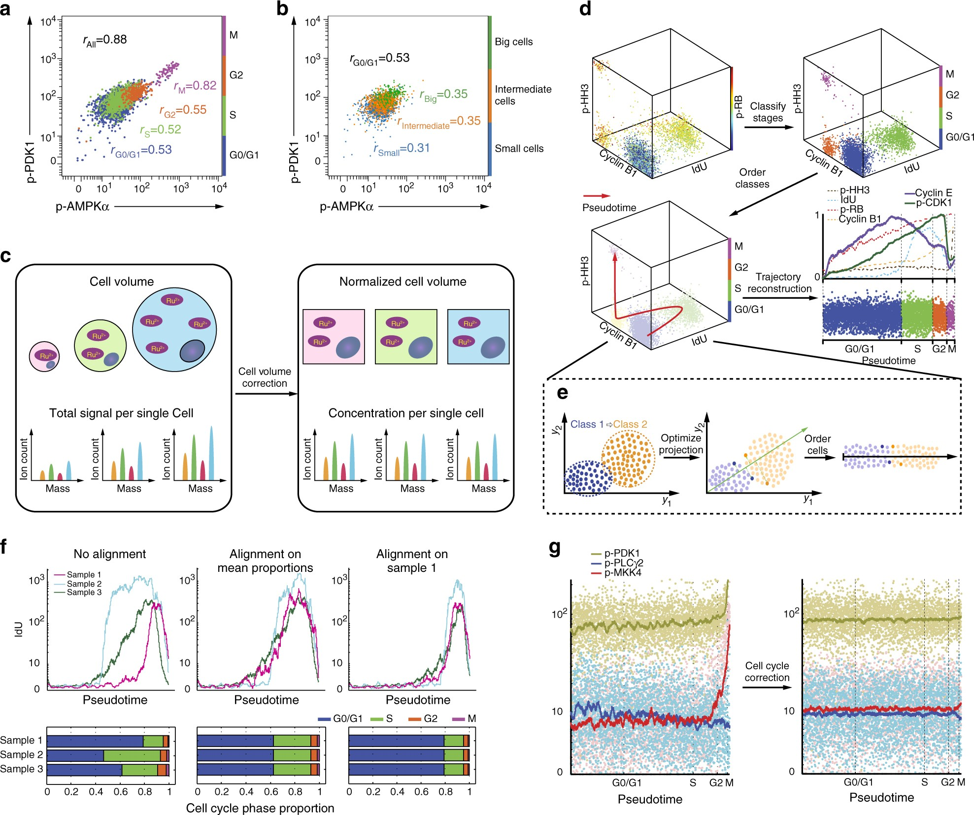 Cellcycletracer accounts for cell cycle and volume in mass cytometry cellcycletracer accounts for cell cycle and volume in mass cytometry data nature communications geenschuldenfo Choice Image