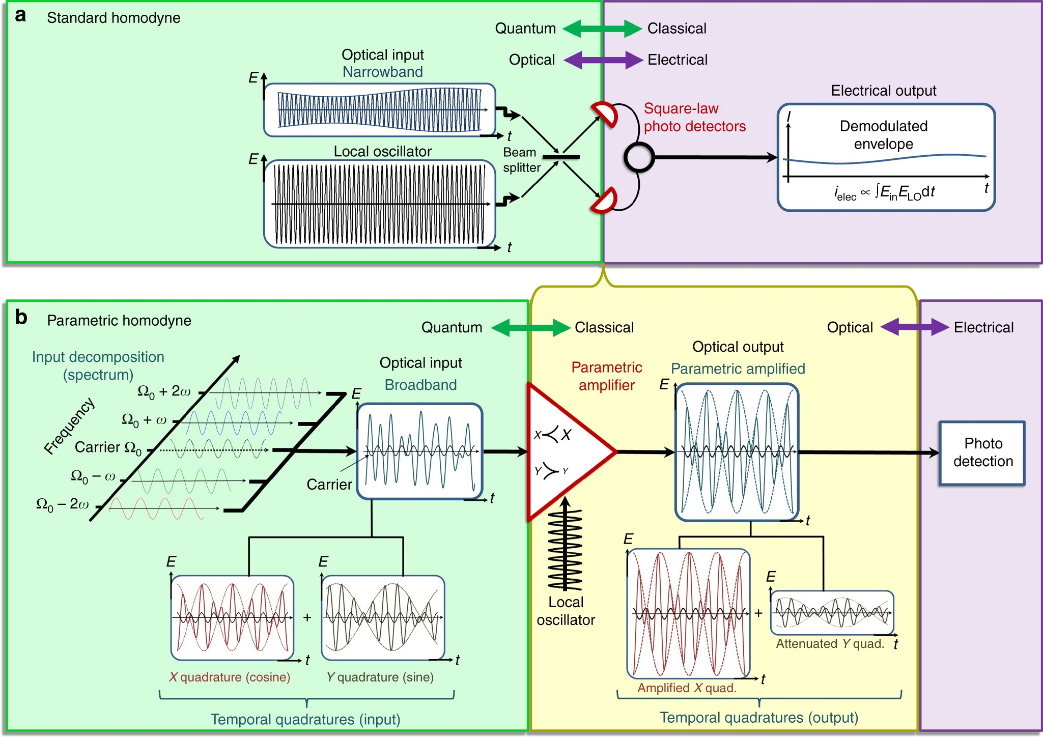 Lifting The Bandwidth Limit Of Optical Homodyne Measurement With Current And Amplification Electronics Electrical Broadband Parametric Nature Communications