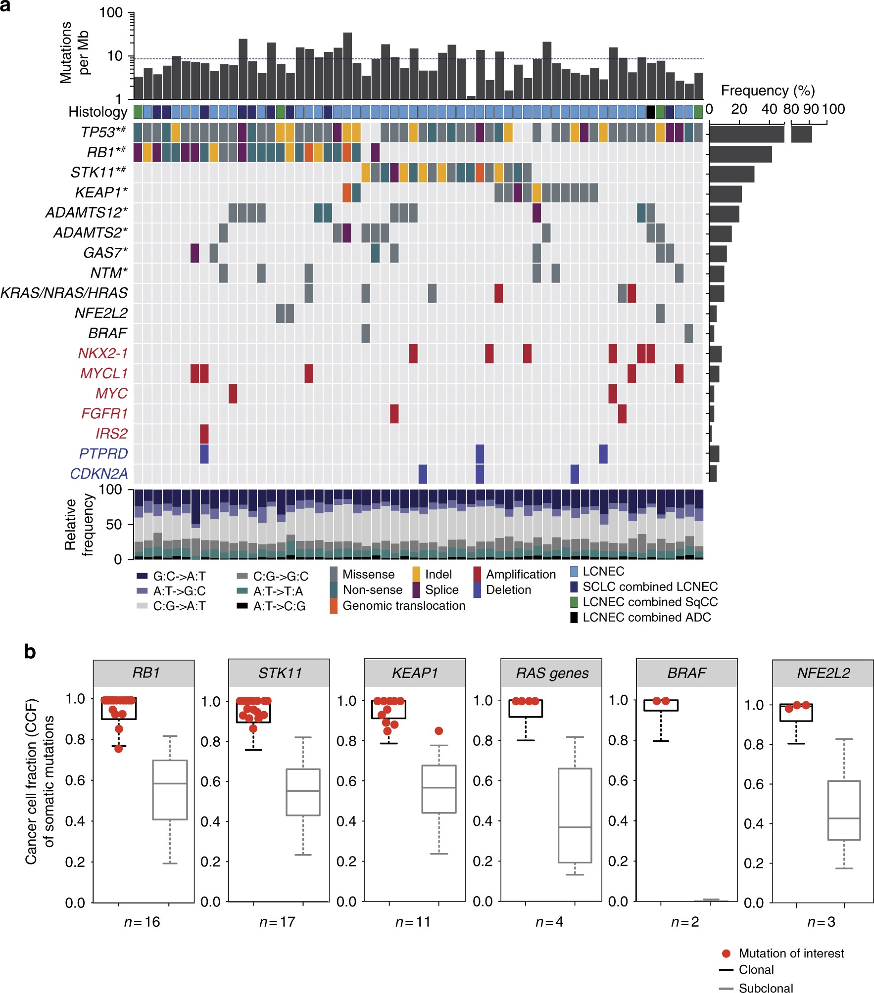Integrative genomic profiling of large-cell neuroendocrine