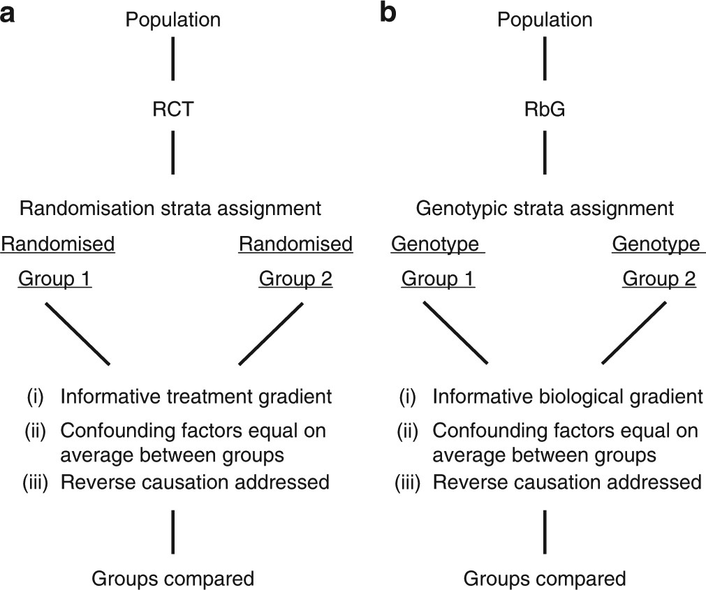 Formalising recall by genotype as an efficient approach to