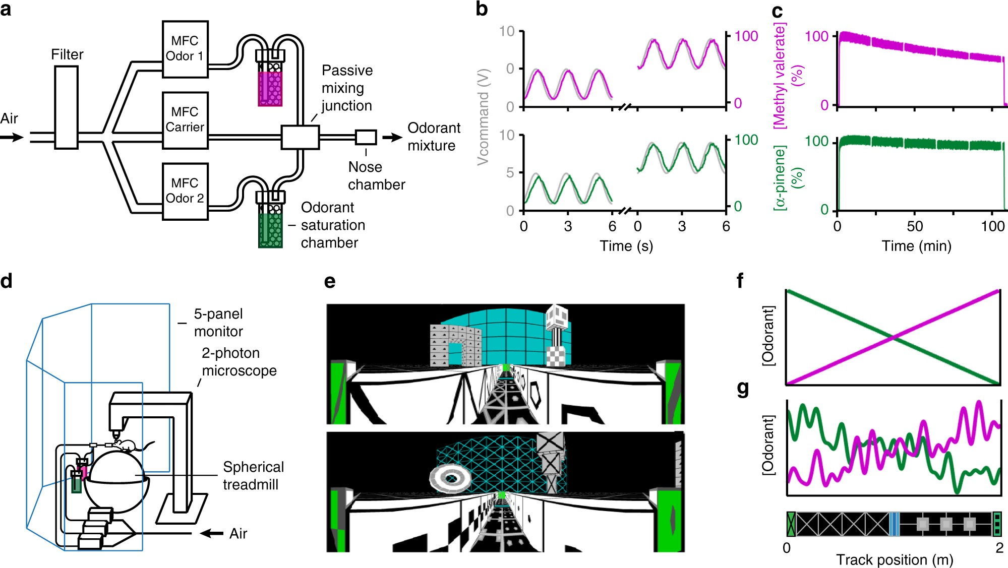 An olfactory virtual reality system for mice | Nature Communications