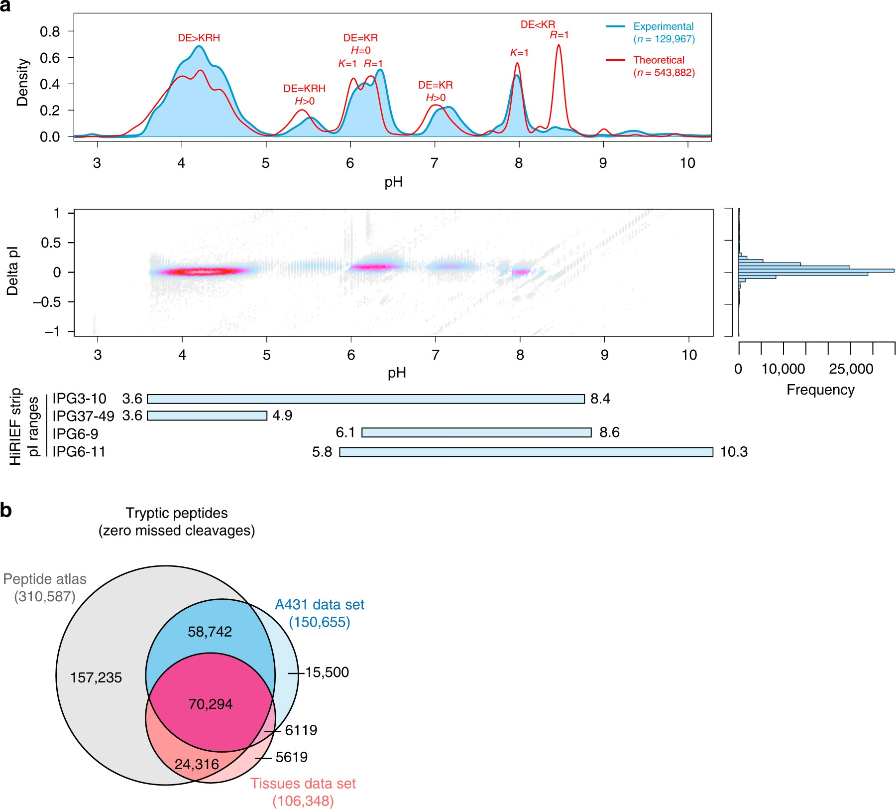Discovery Of Coding Regions In The Human Genome By Integrated